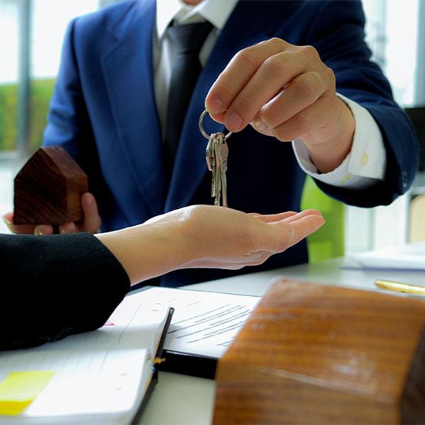 Albanne Property Management Ltd